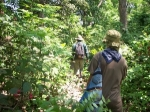 Foot walking, such a great exciting way to explore the hidden wildlife in bardia national park
