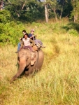 Way to explore deep jungles where no possible by foot